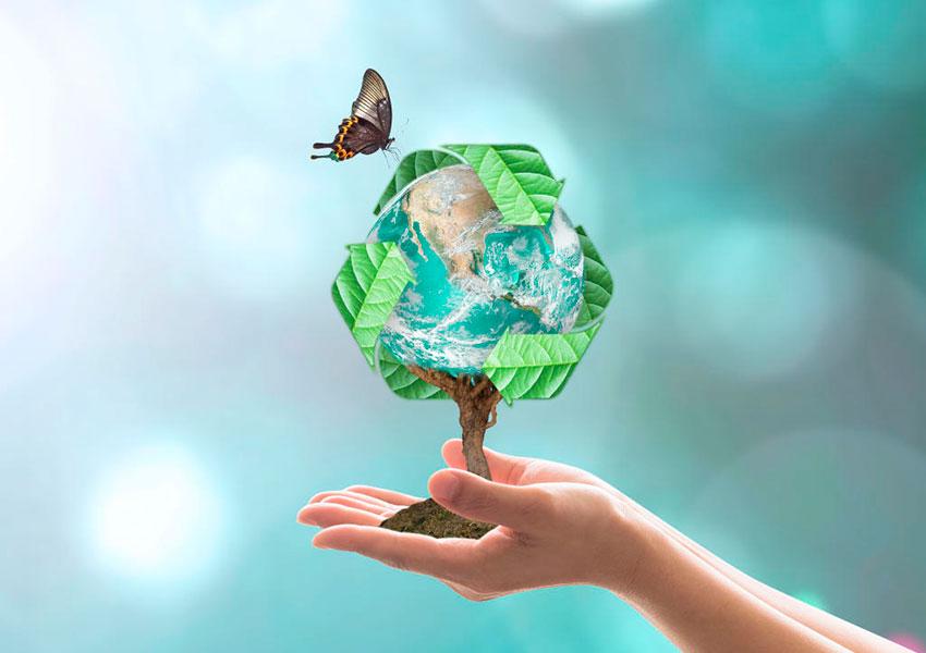 cambio climático renovable